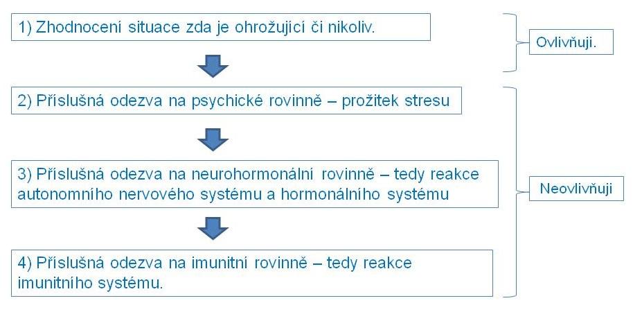 PNI_schema1