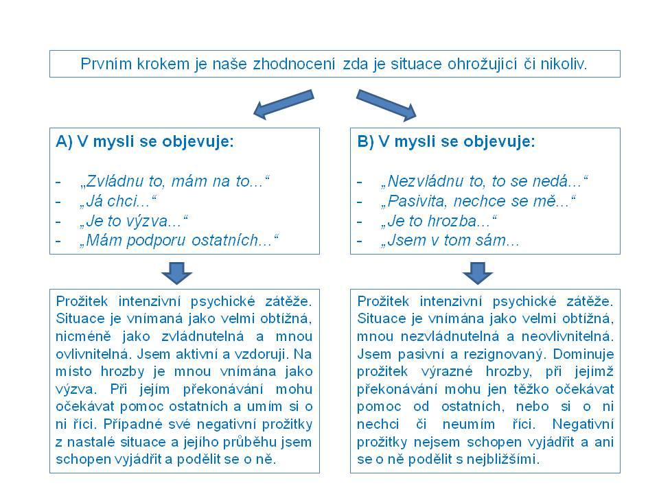 Psychimunita4_schema